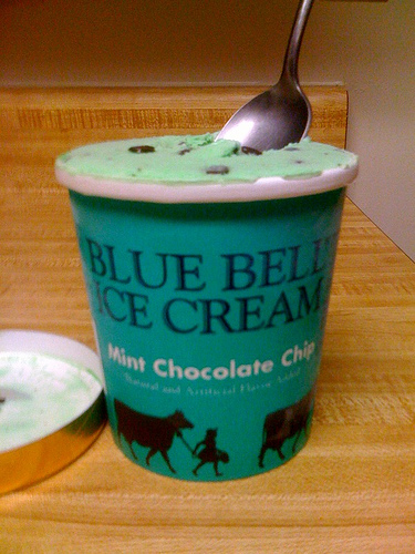 Blue Bell Mint Chocolate Chip Bars