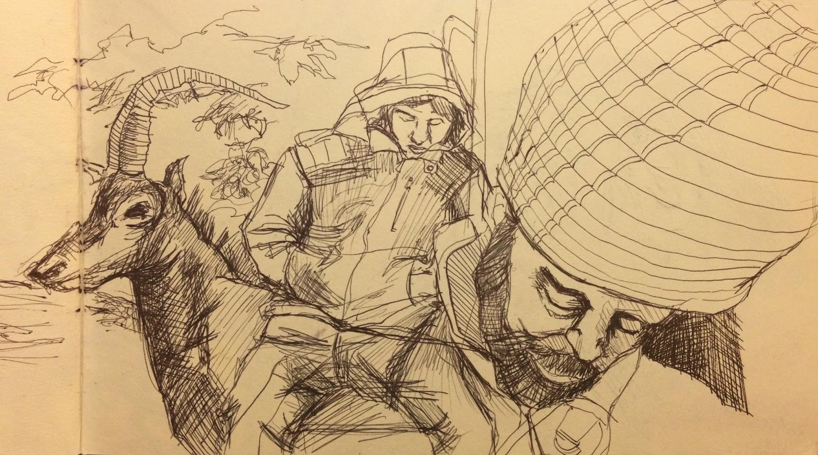 Sleeping Man on Train Sketch