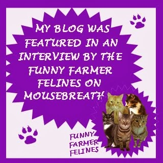 My interview in Mousebreath