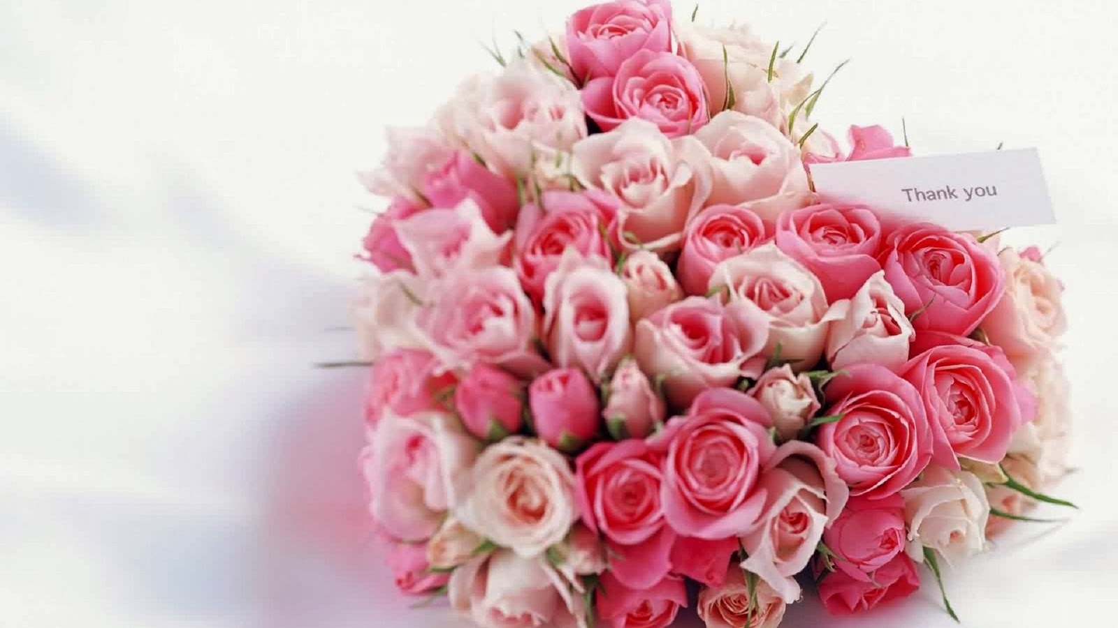 Happy Valentine s Day Flowers Wallpapers