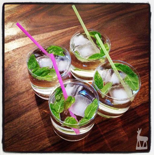 Hugo - der Drink. Foto by Bernd Reinthaller