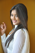 Pooja Jhaveri new Glam photo shoot-thumbnail-13