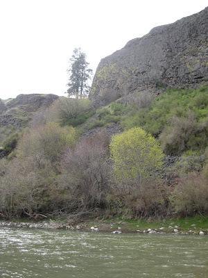 idaho river