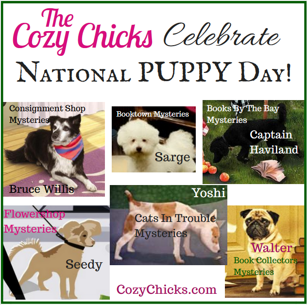 Cozy Chicks: Rescued Dogs