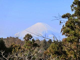 葛原岡神社:富士