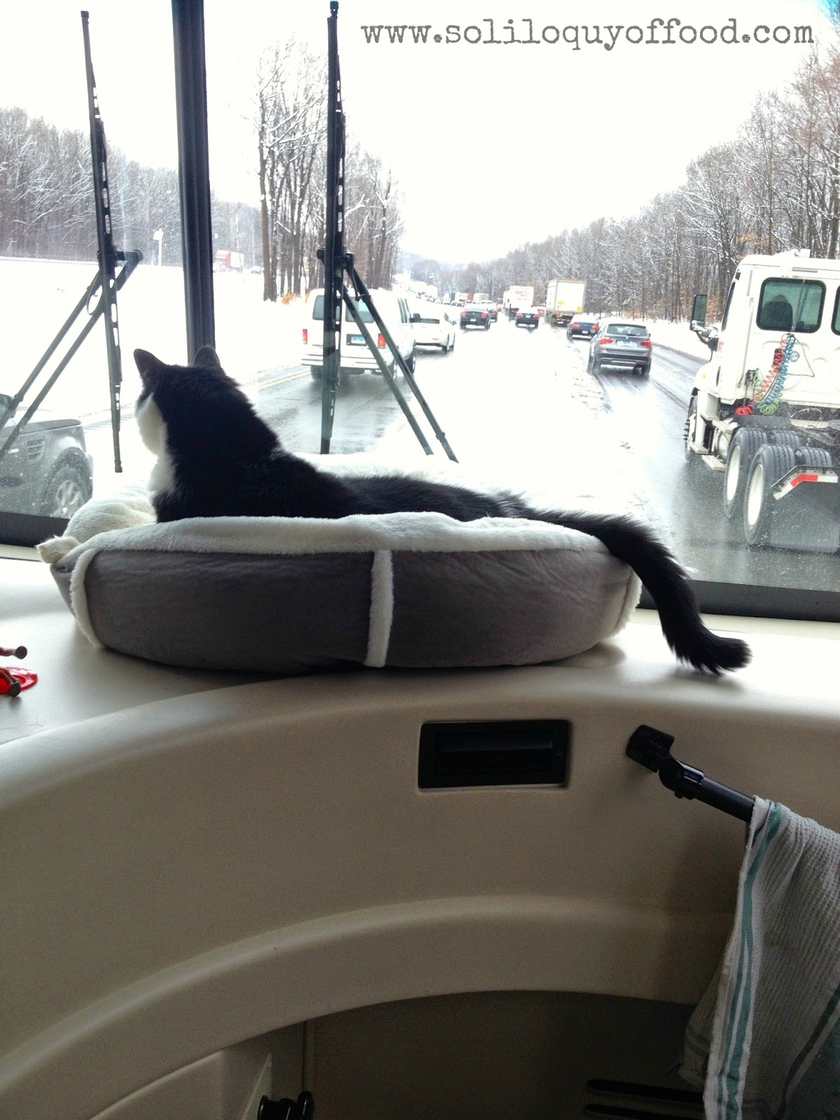 Chaos On Wheels - Duke has a primo seat as we head to PA - www.soliloquyoffood.com