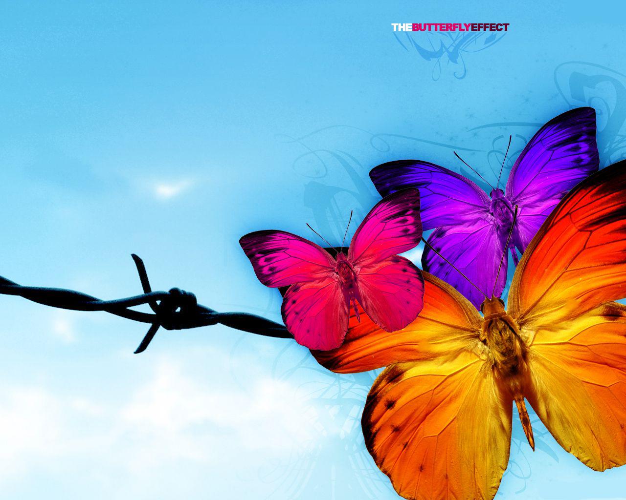 Descarga Mas De 90 Wallpapers De Mariposas