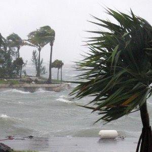 ANDREA GOLPEA LA COSTA OESTE DE FLORIDA EL 06 DE JUNIO 2013