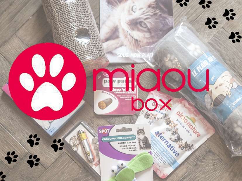 miaoubox, octobre, chats, box