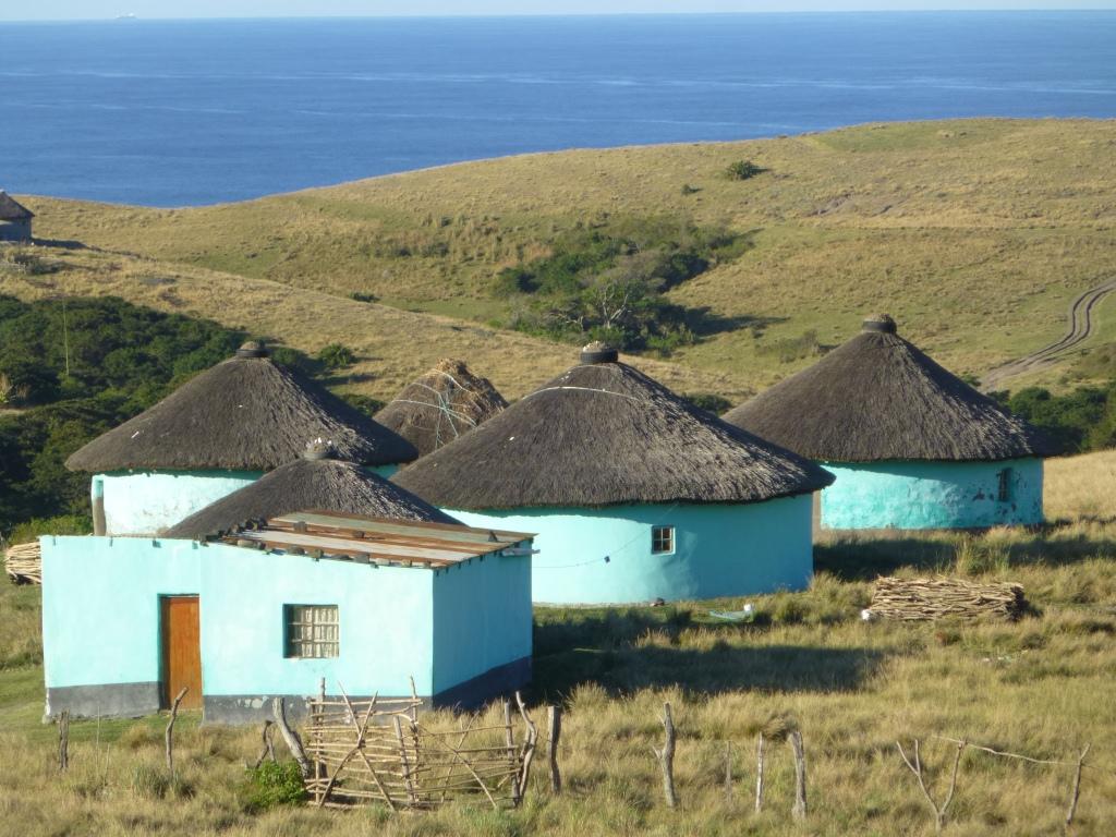 (编辑)南非的民族族群2:科萨族 - 六一儿童 - 译海拾蚌