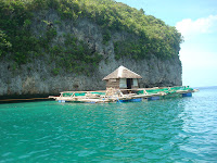small cottage in the middle of the sea