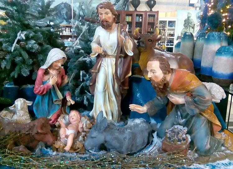 Ni brujas ni princesas decorando en navidad for Agro jardin estepona
