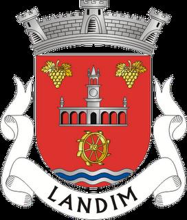 Marcelo  Ferreira de Landim