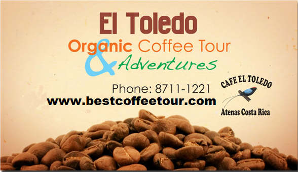 Toledo Coffee tour and adventures