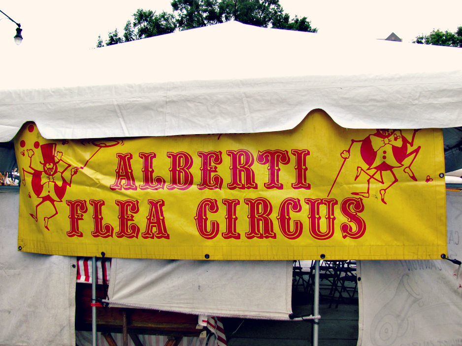 bugfest-2013-alberti-flea-circus-raleigh-nc