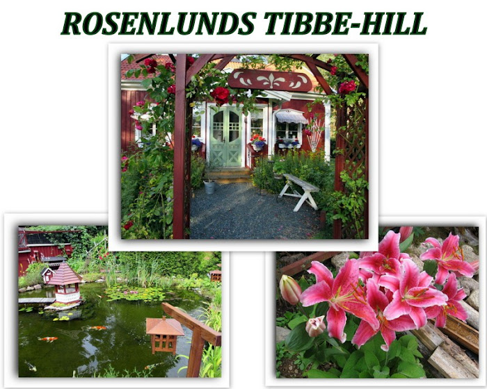 ROSENLUNDS TIBBE-HILL