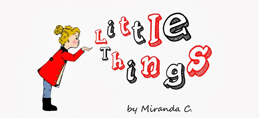 little things by miranda c