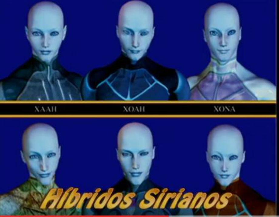 **HERMANOS SIRIANOS**