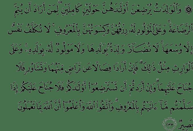 QS Al-Baqarah 2:233