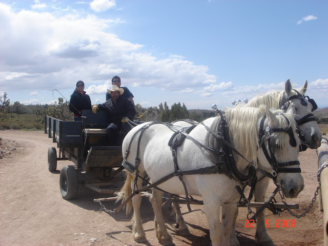Horse Drawn Wagon,Grand Canyon, USA
