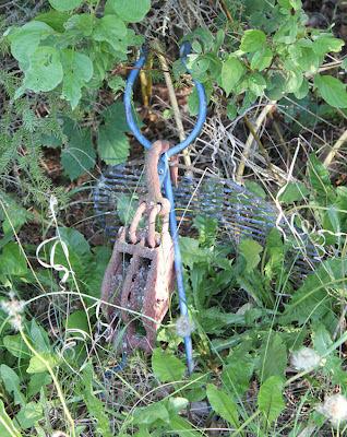 scrap metal bird sculpture in the woods