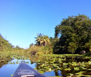 Fort Lauderdale Sehenswürdigkeiten: Hugh Tayler Birch Park