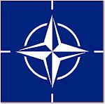 Amigo de la NATO/OTAN