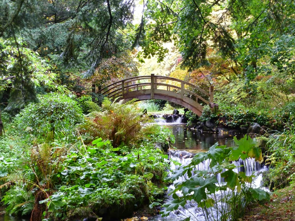 frieda oxenham stobo water garden