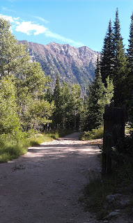 Red Pine Trail Alta Utah