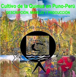Cultivo de Quinua en Puno