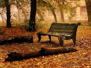 Mudar de vida, solidão é preciso, dicas.