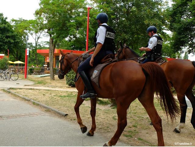 ile base de loisirs Cergy pontoise accrobranche etang lac pique-nique activité plein-air outdoor evjf, police cheval