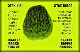 Bagian Otak Manusia yang Mengendalikan