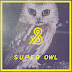[ALBUM DOWNLOAD] Super Owl (Robs & Duke)