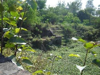 रणजीत सिंह तालाब जगदेव कलां