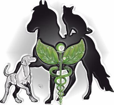 naturheilkundliche Intensiv- Therapie bei Hund und Pferd