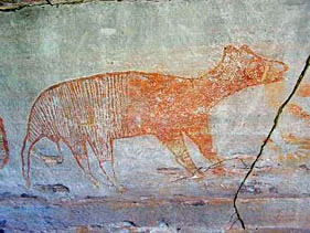 Thylacine_rock_art.jpg