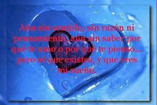 Frases De Amor: Aún Sin Sentido Sin Razón Ni Pensamiento Aún Sin Saber Por Qué Te Amo O Por Qué Te Pienso