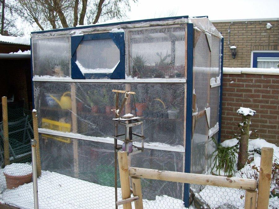 Backyard Greenhouse Art And Home Designs