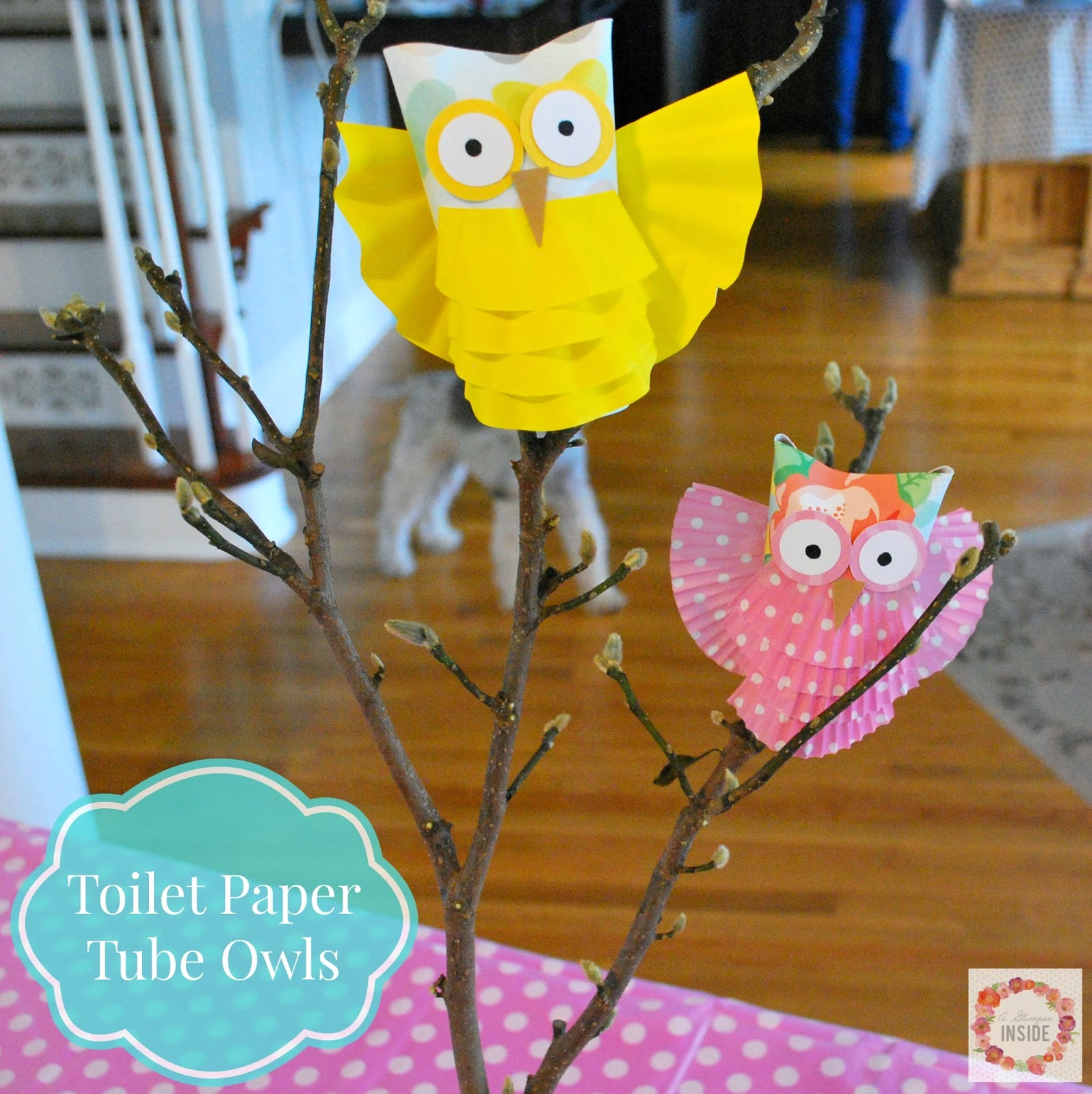 http://www.aglimpseinsideblog.com/2014/12/toilet-paper-tube-owls.html