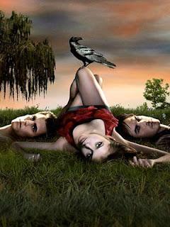 http://4.bp.blogspot.com/-NaTKLHVxScc/Td6eugCVKiI/AAAAAAAAAG0/dmZ0LvQYEdM/s320/the-vampire-diaries-poster1.jpg