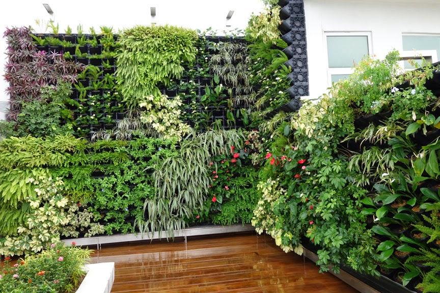 Vertical Garden Concept For Buildings Greenwall Vertical