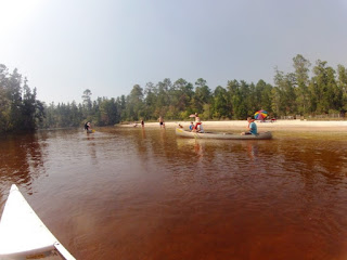 Canoeing the Blackwater River