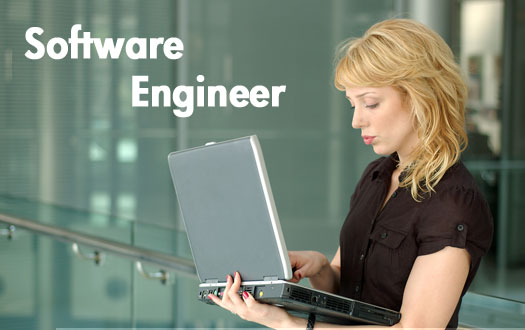 Software Engineering subjects to take for being a designer in college