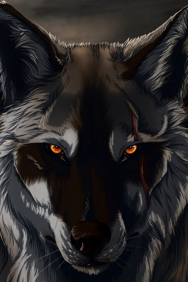 black wolf 3d wallpaper for iphone 4