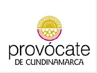 Segunda versión del Concurso Provócate de Cundinamarca