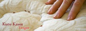 cara membasmi tungau kasur di tempat tidur