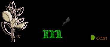 Memiso.com