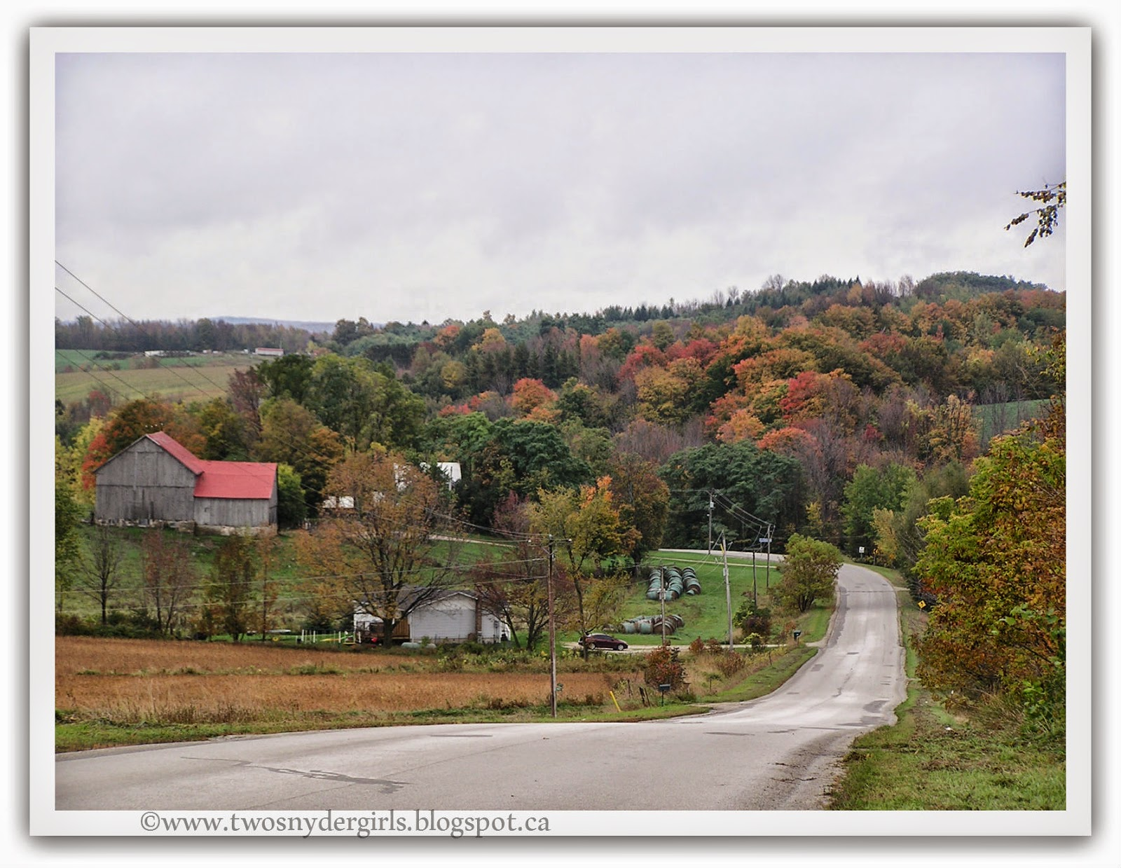 Country Road background hills covered in fall colours