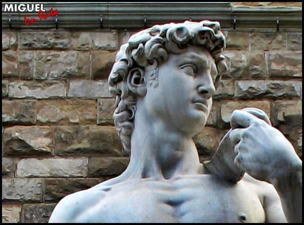 David-Florencia